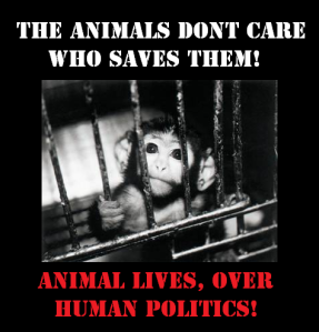 Animal Lives, Over Human Politics. Non-Humans First.